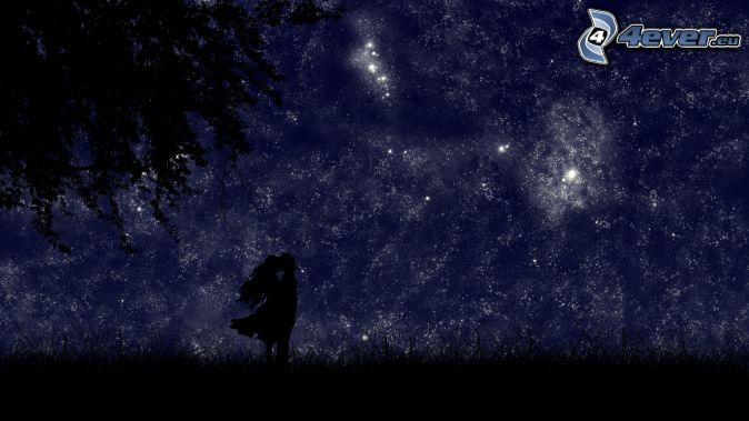 silhouette-du-couple,-ciel-de-la-nuit,-ciel-etoile-197622