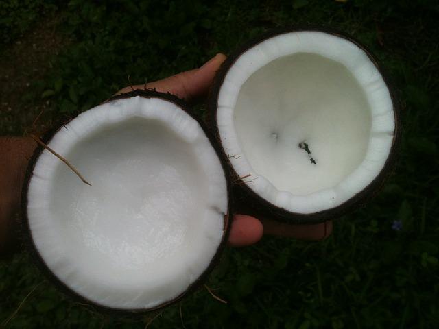 huile de palme ou de coco